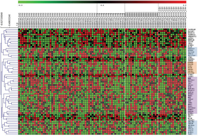 Neurogenes expression among breast cancer subtypes (MicMa Database) Tumor gene expression levels for 96 patients with different breast cancer subtypes.
