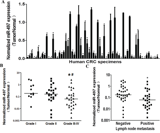 MiR-497 levels are down-regulated in human colorectal cancer tissues.