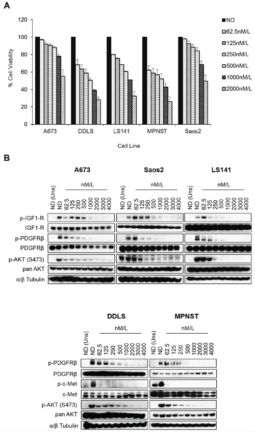 MGCD516 has potent anti-proliferative effect and inhibits multiple RTKs at low nanomolar concentrations.