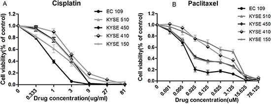 Response of panel of 5 cell lines to cis-platinum and paclitaxel-induced growth inhibition.