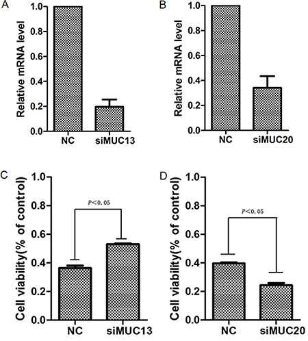 Kncokdown of MUC13 or MUC20 affected the sensitivity of ESCC cells to chemotherapy agent.