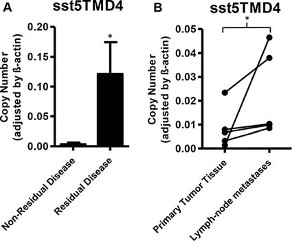 Expression of sst5TMD4 is associated to increased malignancy in patients with GEP-NETs.