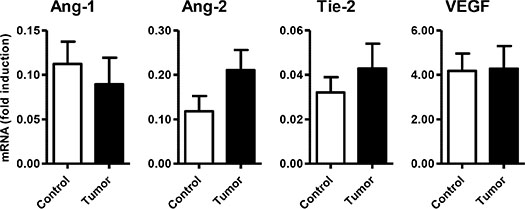 Expression of angiogenic molecules/markers in GEP-NETs and adjacent non-tumor tissue.