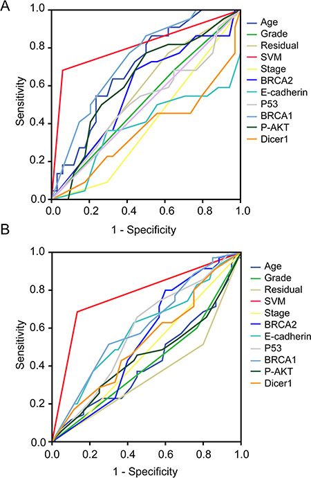 Receiver operating characteristic (ROC) curves for traditional clinicopathological prognostic factors, including age, and clinical stage, grade, residual tumor volume, as well as each 6 selected molecular marker and the HGSOC-SVM classifier in both of testing and validation cohort.