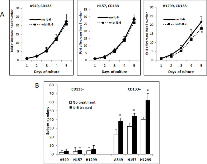 Differential roles of IL-6 in modulating growth/self-renewal of CD133- vs. CD133+ cells of NSCLC cell lines.