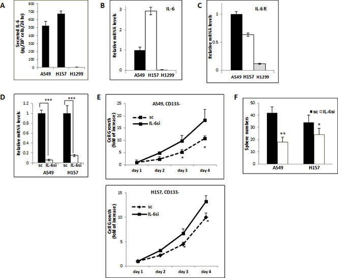Opposite IL-6 effects on the growth/self-renewal of CD133− and CD133+ cells isolated from the IL-6 expression-manipulated A549 and H157 cell lines.