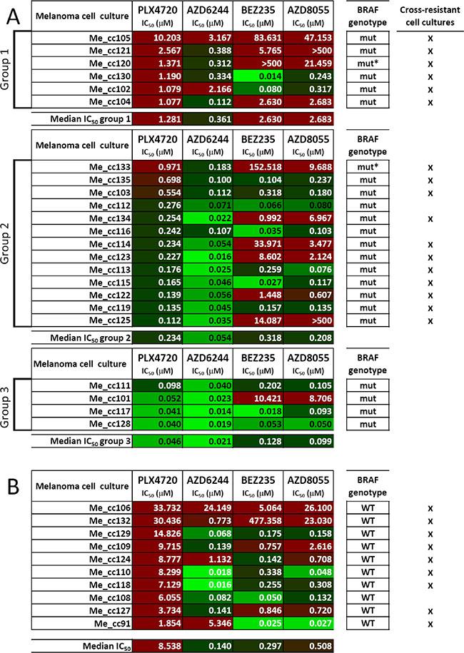 Responsiveness to BRAF-V600E-, MEK1/2- or PI3K/mTOR-specific inhibitors in short-term melanoma cell cultures.