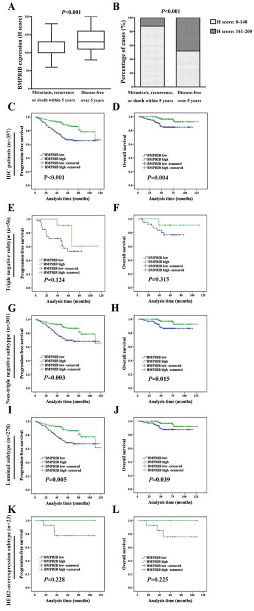 Low expression of BMPRIB in IDC patients indicated worse prognosis.