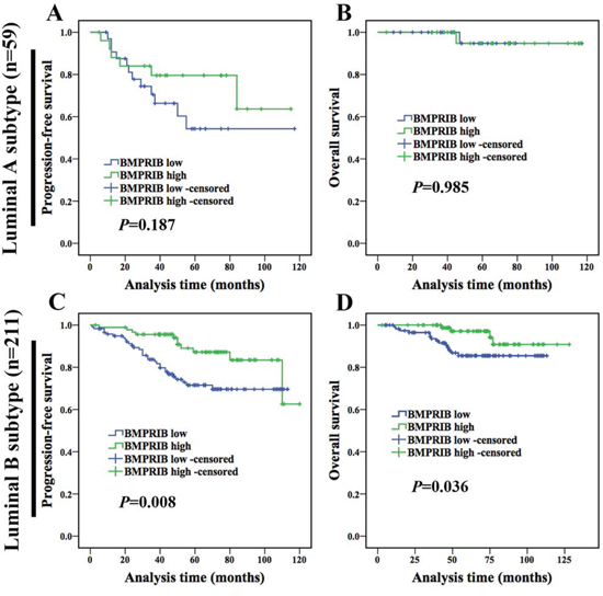 Low expression of BMPRIB in luminal B subtype patients indicated worse prognosis.