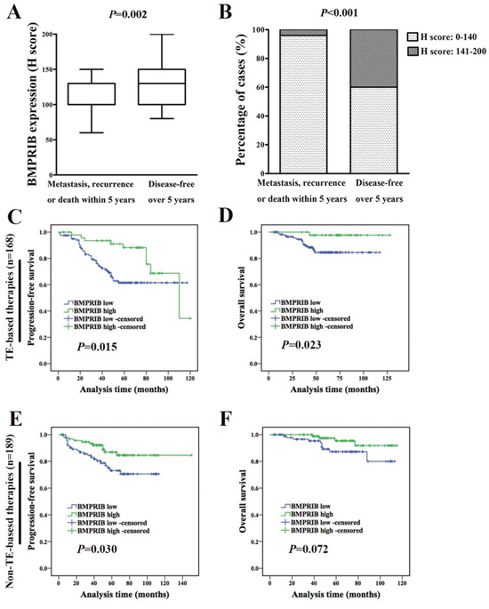 High BMPRIB expression indicated favorable prognosis in breast cancer patients treated with TE-based therapies.