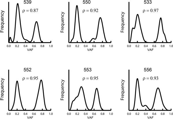 Distribution of somatic VAF on chromosome 8q in samples with gained copies of chromosome 8q.