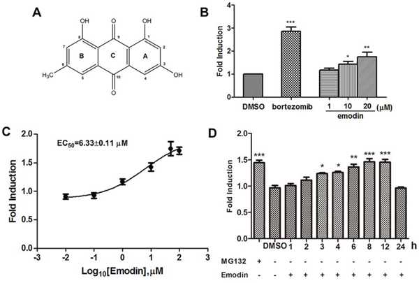 Figure 2. Emodin inhibits the activity of the 26S proteasome in vitro and in vivo.