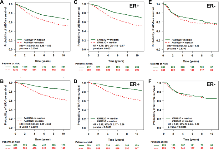 Evaluation of the prognostic impact of FAM83D mRNA expression on any event (AE) - and metastatic relapse (MR)-free survival.
