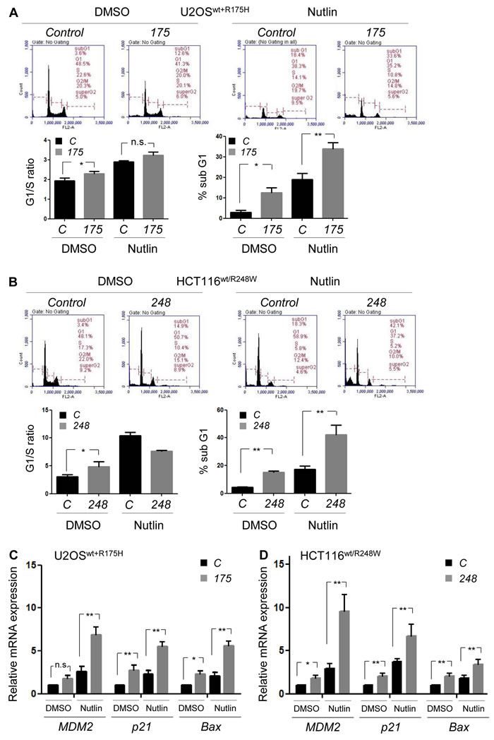 Allele-specific silencing of mutp53 by siRNAs induces apoptosis and proliferation arrest with restoration of wtp53 activity.
