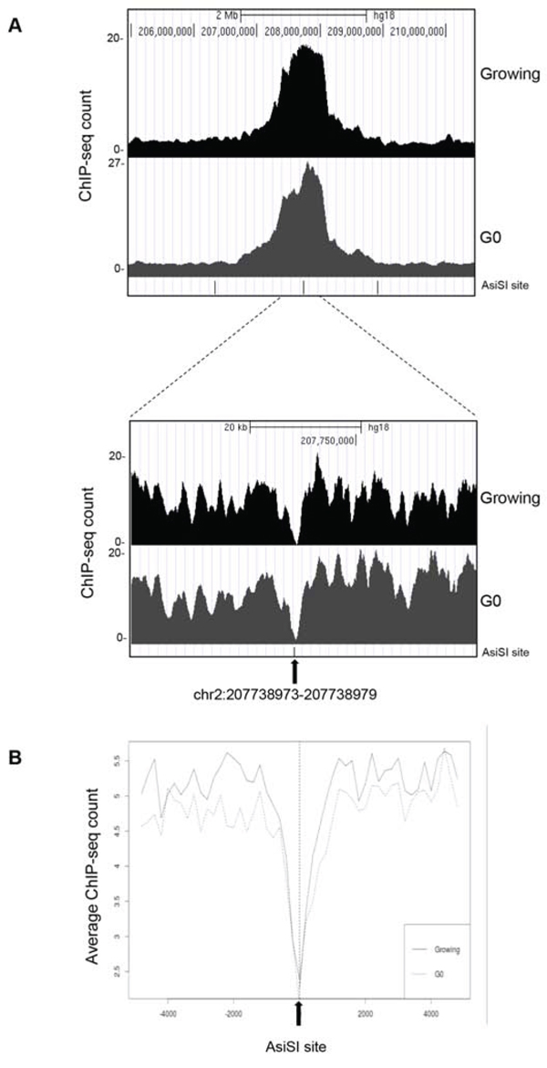 ChIP-seq analyses in proliferating and G0-arrested MCF10A-AsiSI-ER cells after 4OHT treatment (2 h), using anti-γH2AX antibody.