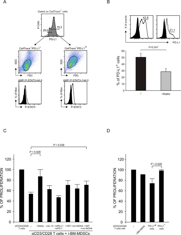 Relationship between STAT3 activation and PD-L1 expression.