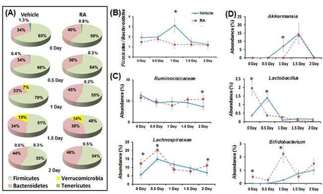 The effect of RA on gut microbiota during liver regeneration.