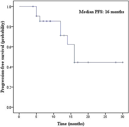 Kaplan-Meier survival curves of PFS for EGFR-TKI treatment.