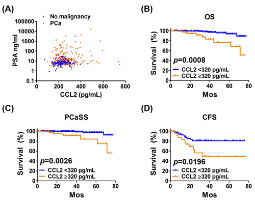 Analysis of PSA and CCL2 levels as functions of OS, PCaSS, and CFS.