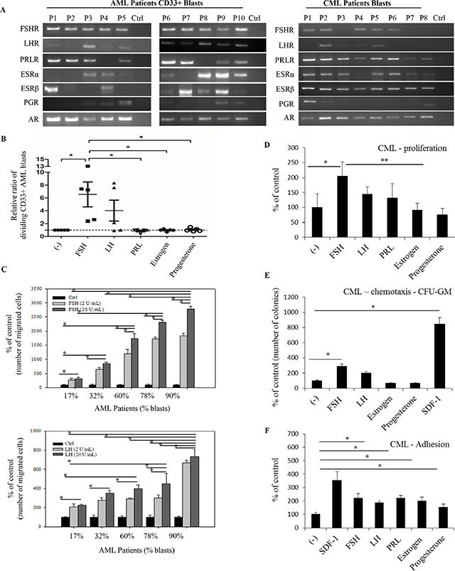 Functional SexH receptors are expressed by CD33+ AML and CML primary human patient blasts.