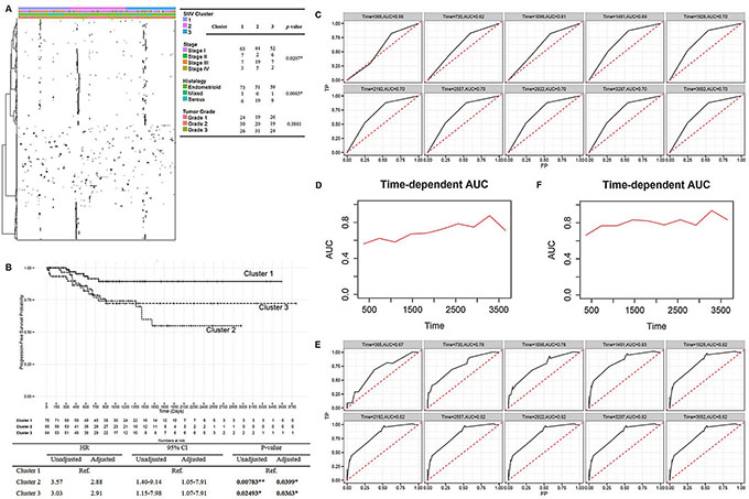 Mutation signatures of endometrial cancers and its prognostic potential.