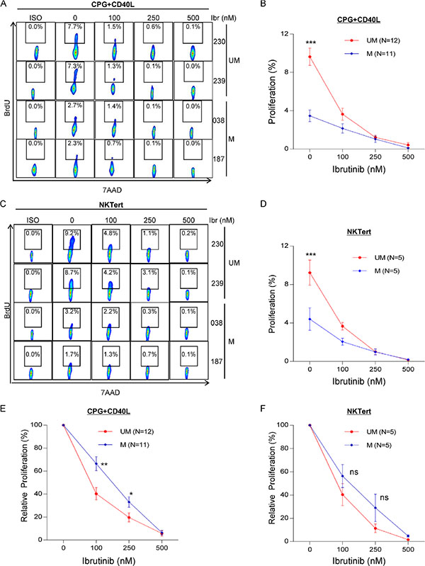 UM-CLL is more sensitive to ibrutinib than M-CLL in both CpG + CD40L and NKTert stromal coculture models.