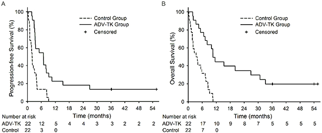 Kaplan-Meier plots for Progression-free Survival (PFS) and Overall Survival (OS).