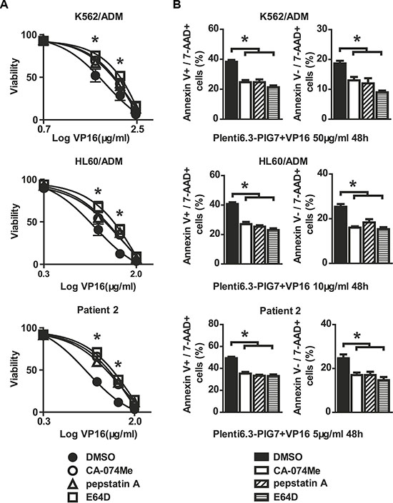 Cathepsin inhibitors are protective against cellular toxicity.