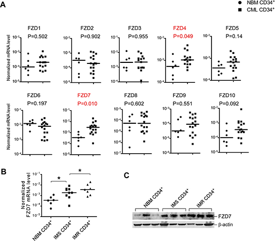 Several differentially expressed FZD genes identified in CML patients compared with normal stem/progenitor cells.