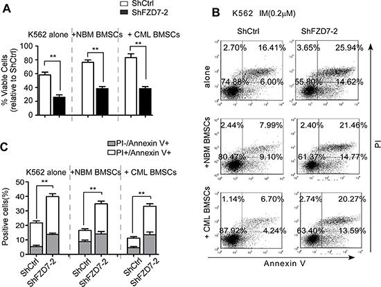 Down-regulation of FZD7 abrogates IM resistance induced by BMSCs.