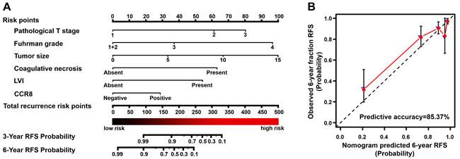 Built-up prognostic nomogram and calibration plots for RFS prediction of postoperative ccRCC patients.