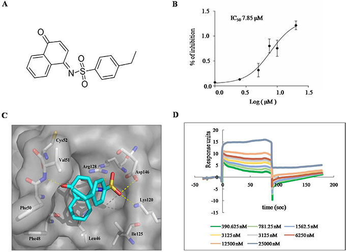 H7 inhibits Prdx I catalytic activity.