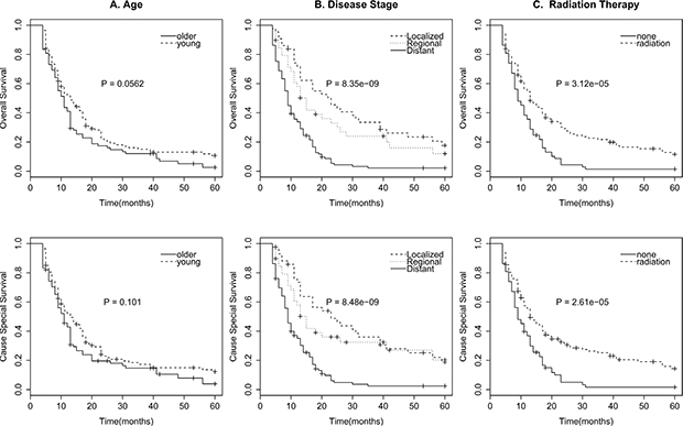 Survival curves in patients according to age (A), Disease stage (B), and radiation therapy (C) of OS and CSS.