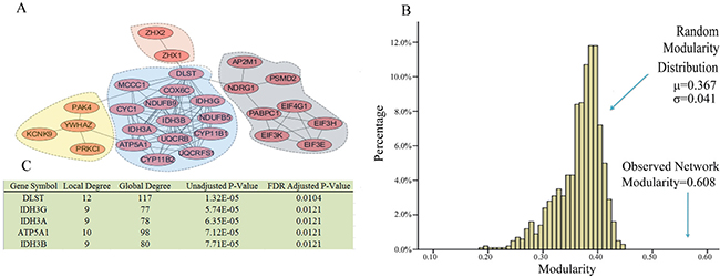 Network modules identified in ovarian cancer subtype 2.
