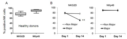NKG2D is downregulated in peripheral blood NK cells of Major Burn patients.
