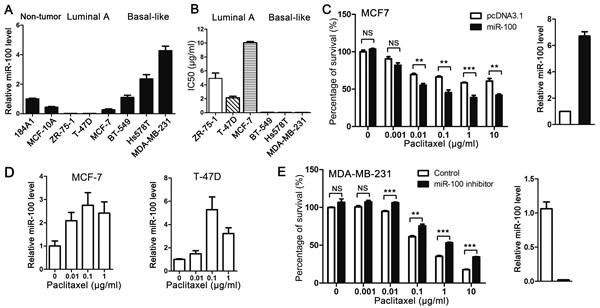 Expression of miR-100 sensitizes breast cancer cells to the cytotoxic effect of paclitaxel