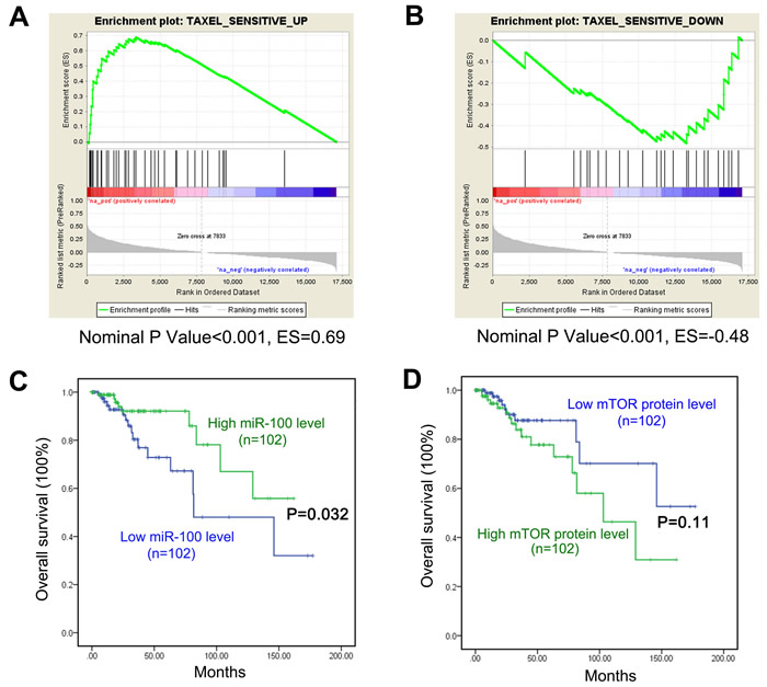 Implication of miR-100 in breast cancer response to paclitaxel treatment.