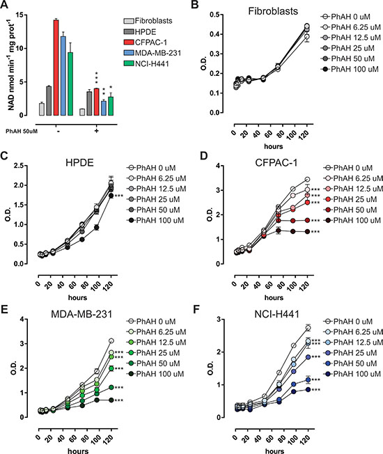 Sensitivity of cancer cells to the pan-enolase inhibitor PhAH.
