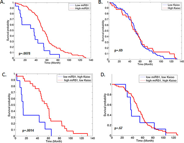 Increased expression of Kaiso and decreased miR-31 expression are correlated with decreased overall survival in PCa patients.