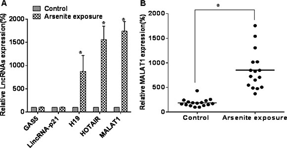 Some lncRNAs are over-expressed in sera of people exposed to arsenite.