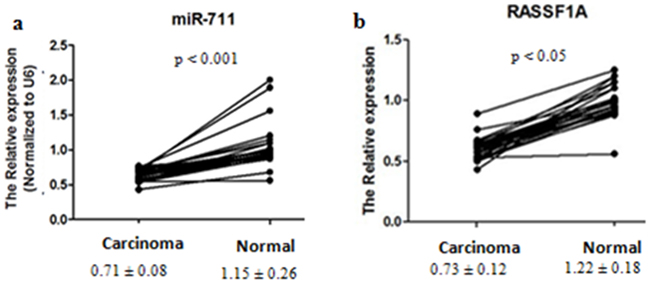 Differential expression of miR-711 and RASSF1A between gastric cancer tissues and normal gastric mucosa tissues.