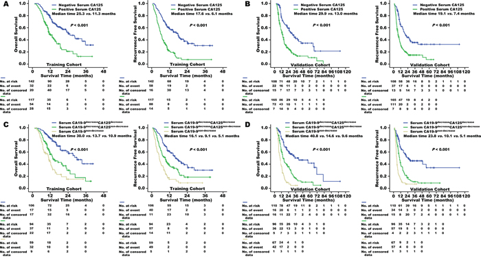 Overall survival and recurrence-free survival of patients in the training cohort