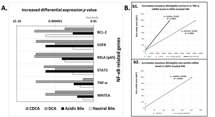 GDFs-induced transcriptional activation of NF-