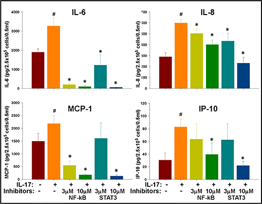 IL-17 mediated enhancement of inflammatory cytokines in GSCs is regulated by NF-κB and STAT-3 signaling.