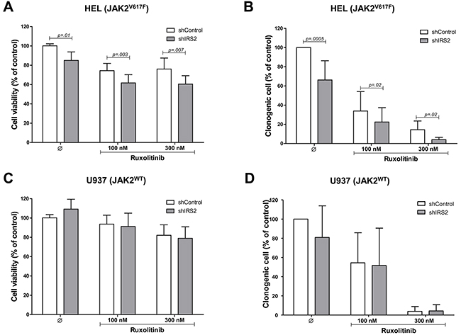 IRS2 silencing reduces cell viability and colony formation, and potentiates the effects of ruxolitinib in HEL cells.