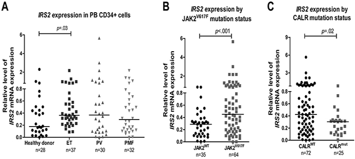 Increased IRS2 mRNA levels in CD34+ cells from JAK2V617F-positive myeloproliferative neoplasm patients.
