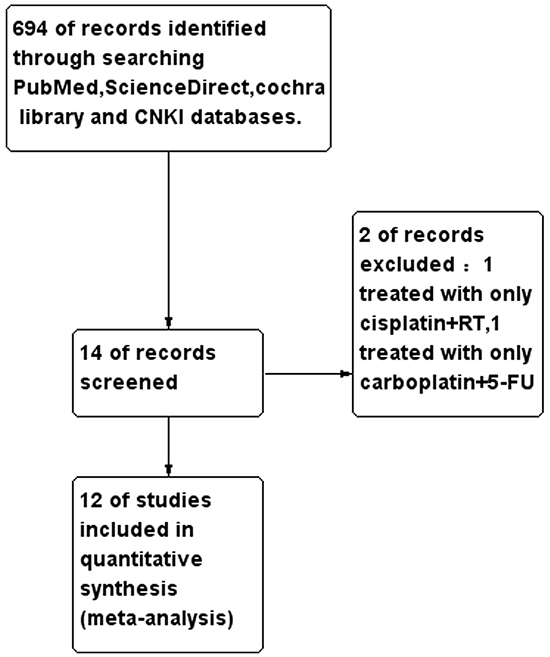 Consort diagram outlining the study selection.