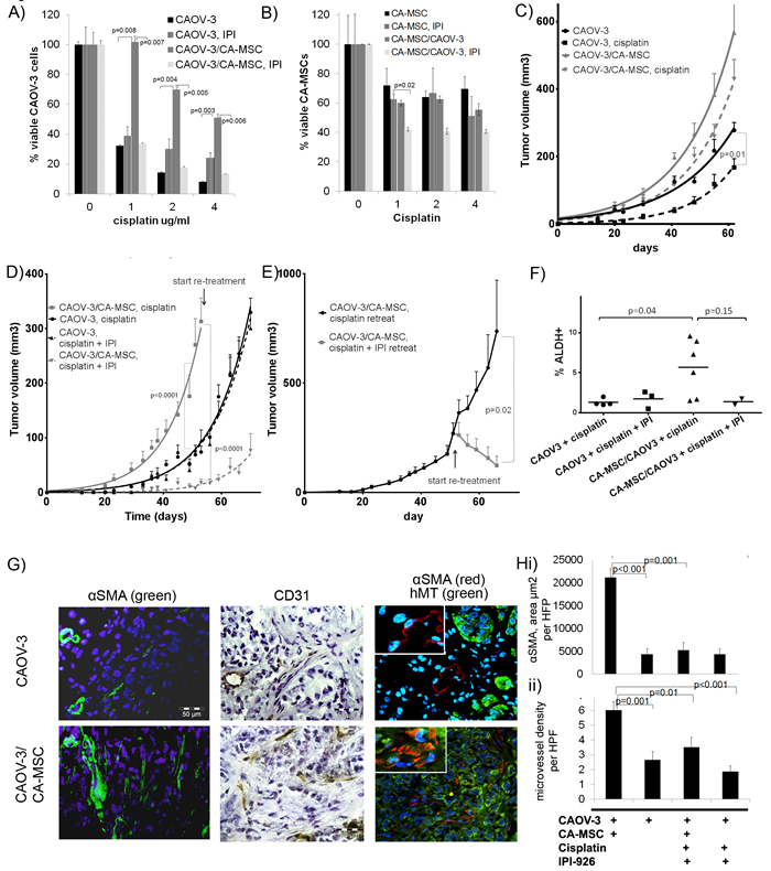 CA-MSCs promote chemotherapy resistance which can be reversed with HH inhibition.