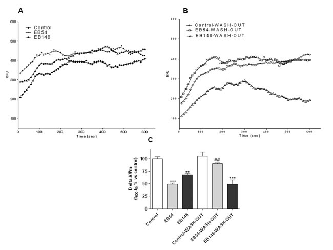Evaluation of Δψm in isolated mitochondria.