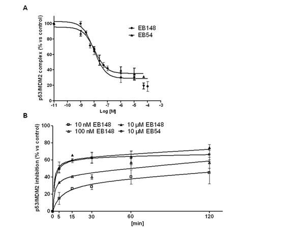 Affinity and association kinetics of EB148 towards MDM2.